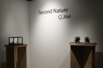 Second Nature MFA ThesisExhibition